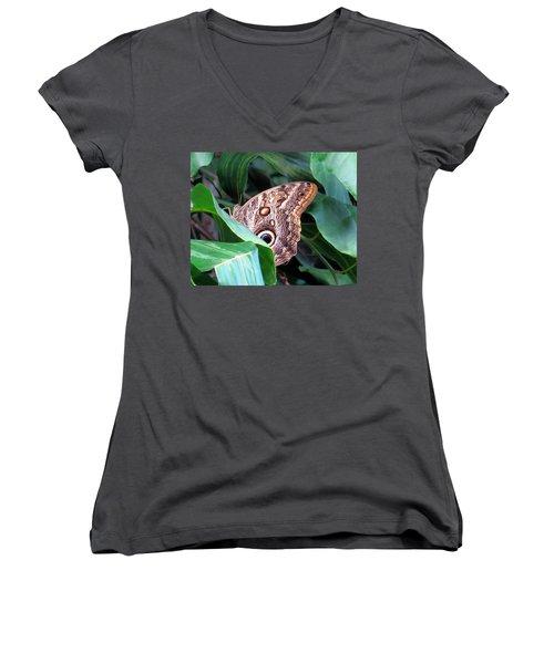 Giant Owl Butterfly Women's V-Neck T-Shirt