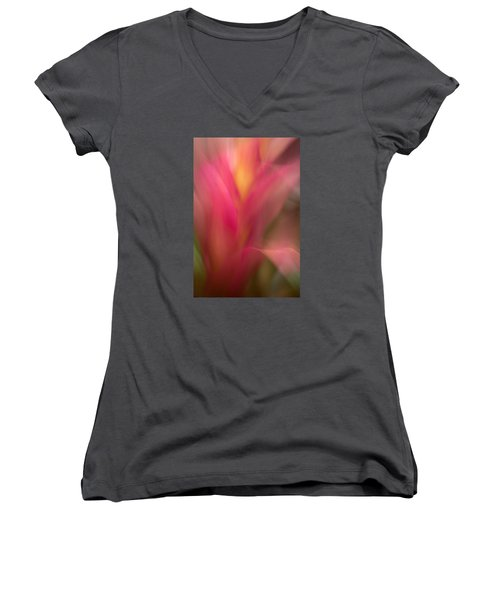 Ginger Flower Blossom Abstract Women's V-Neck T-Shirt (Junior Cut) by Catherine Lau