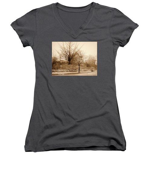 Ginkgo Tree, 1925 Women's V-Neck T-Shirt (Junior Cut) by Cole Thompson