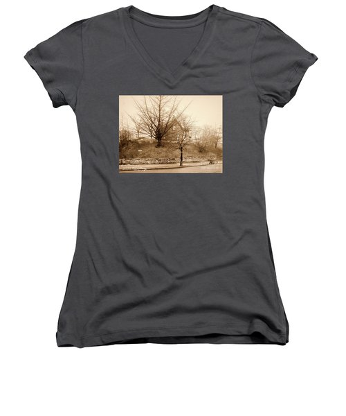 Ginkgo Tree, 1925 Women's V-Neck (Athletic Fit)