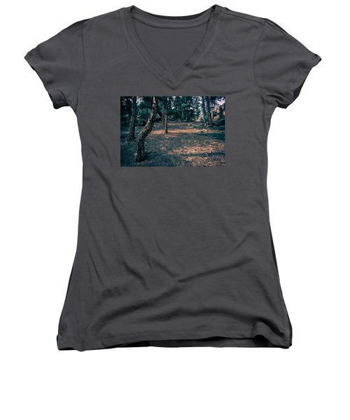 Glade In The Forest Of Colorado Women's V-Neck T-Shirt (Junior Cut) by John Brink