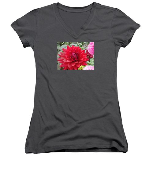 Glory Crimson Dahlia  Women's V-Neck T-Shirt