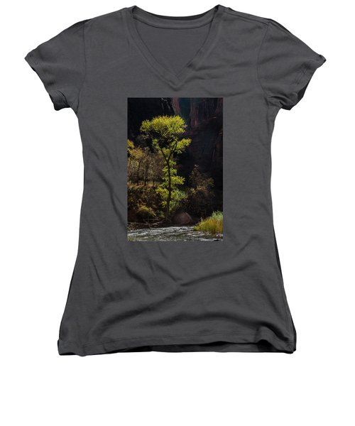 Glowing Tree At Zion Women's V-Neck
