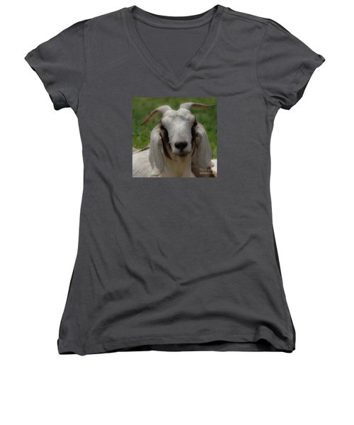 Goat 1 Women's V-Neck (Athletic Fit)