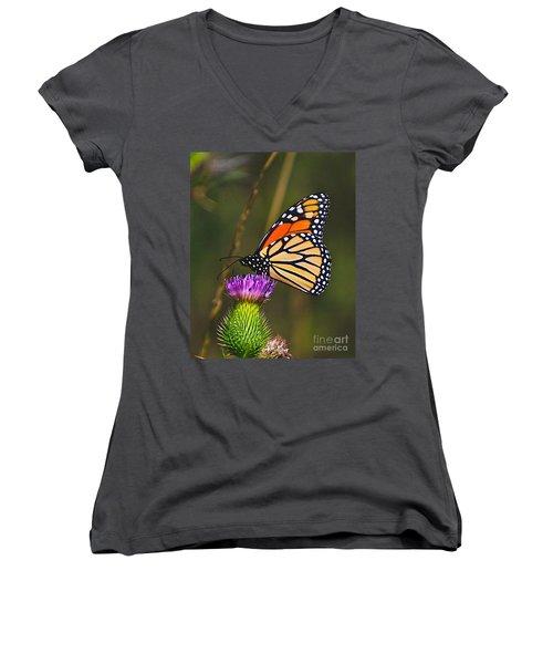 Gods Creation-16 Women's V-Neck T-Shirt (Junior Cut) by Robert Pearson