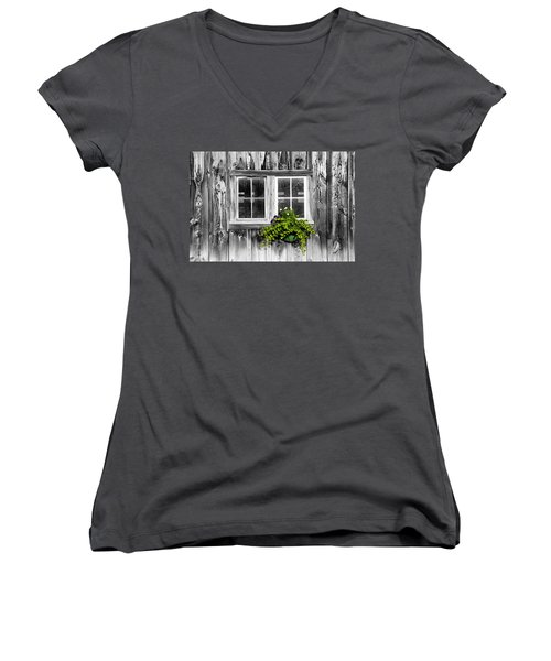 Going Green Women's V-Neck T-Shirt (Junior Cut) by Greg Fortier