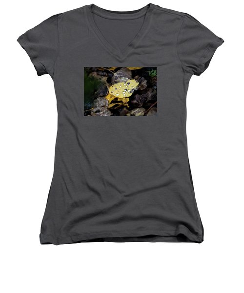 Gold And Diamons Women's V-Neck (Athletic Fit)
