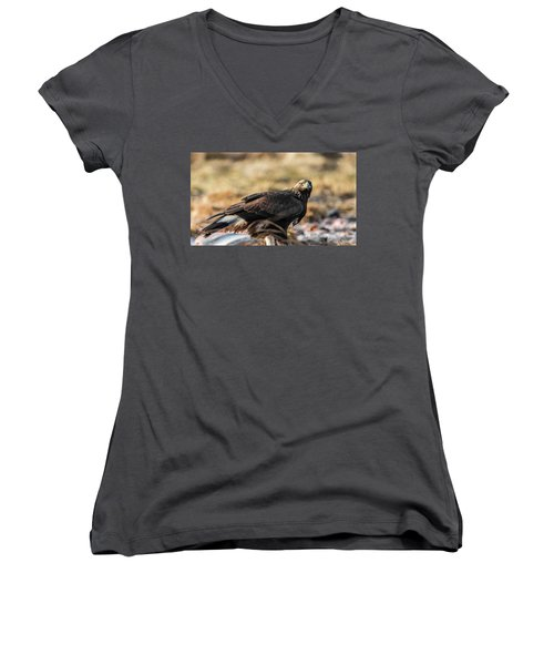 Golden Eagle's Glance Women's V-Neck T-Shirt (Junior Cut) by Torbjorn Swenelius