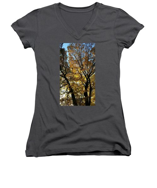 Golden Fall Women's V-Neck (Athletic Fit)