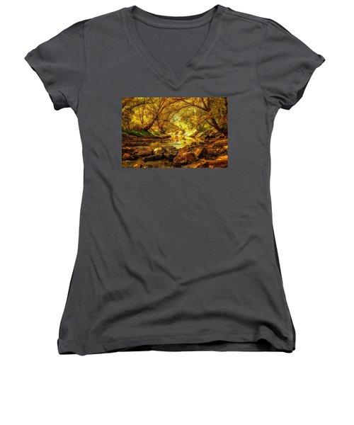 Golden Stream Women's V-Neck T-Shirt (Junior Cut) by Kristal Kraft