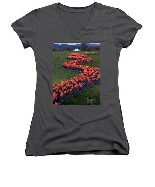 Golden Thread Women's V-Neck T-Shirt