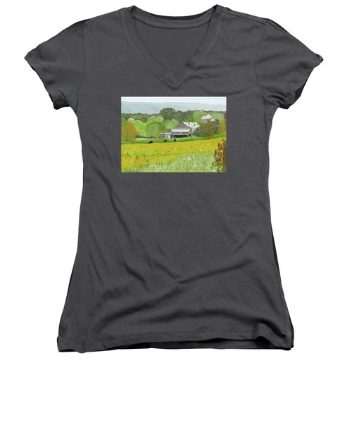 Goldenrod Abounds Women's V-Neck (Athletic Fit)