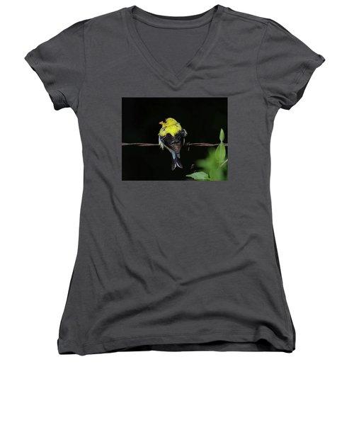 Goldfinch Women's V-Neck T-Shirt (Junior Cut) by Ronda Ryan