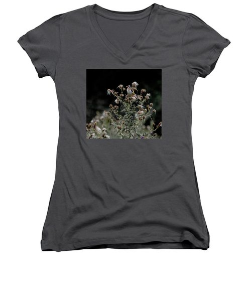 Goldfinch Sitting On A Thistle Women's V-Neck (Athletic Fit)