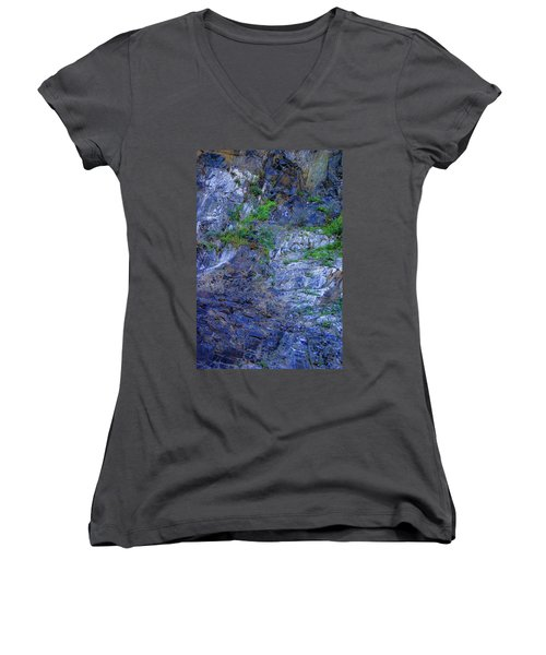 Gorge-2 Women's V-Neck T-Shirt (Junior Cut) by Dale Stillman