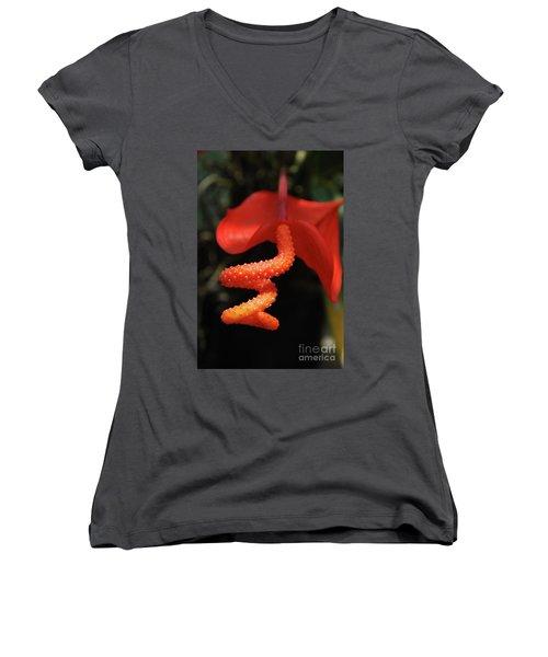 Gorgeous Orange Tropical Flower Blossom Women's V-Neck T-Shirt (Junior Cut) by DejaVu Designs