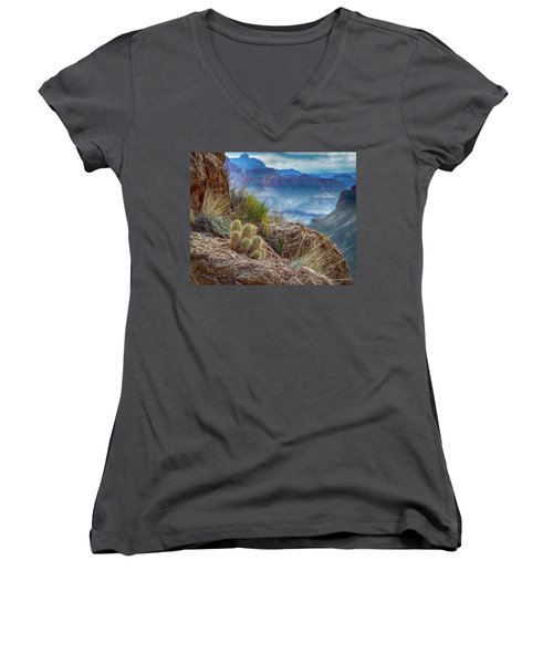 Grand Canyon Cactus Women's V-Neck T-Shirt (Junior Cut) by Phil Abrams