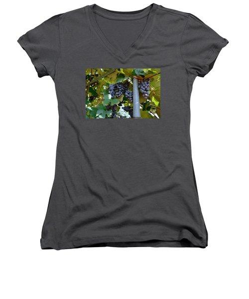 Grape Arbor 1 Women's V-Neck
