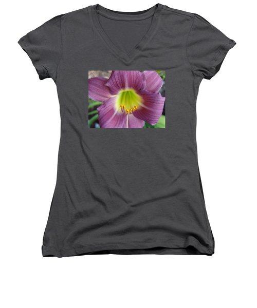 Grape Purple Daylilies  Women's V-Neck T-Shirt (Junior Cut) by Rebecca Overton