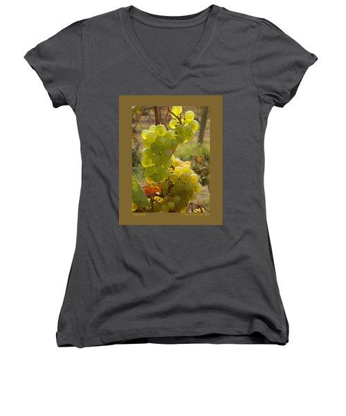 Grape Spiral Women's V-Neck T-Shirt