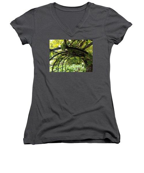 Grape Tunnel Women's V-Neck T-Shirt
