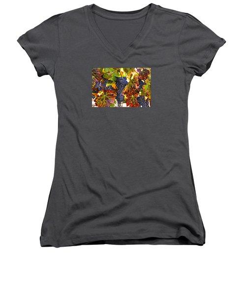 Grapes On Vine In Vineyards Women's V-Neck T-Shirt