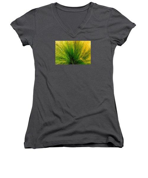 Grass Women's V-Neck T-Shirt (Junior Cut) by Derek Dean
