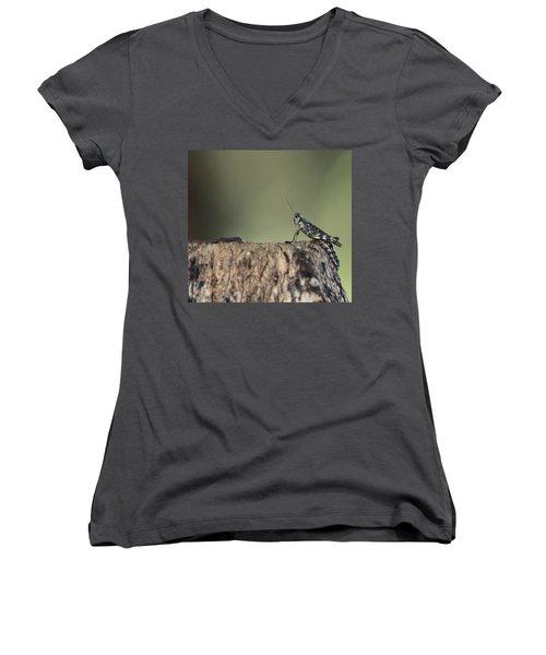 Grasshopper Great River New York Women's V-Neck T-Shirt (Junior Cut) by Bob Savage