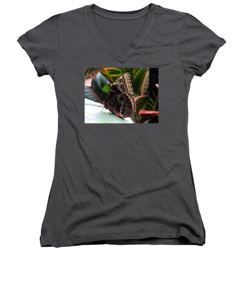 Gray Cracker Butterfly Women's V-Neck T-Shirt