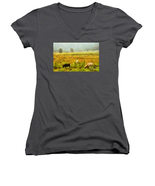 Grazing Women's V-Neck (Athletic Fit)