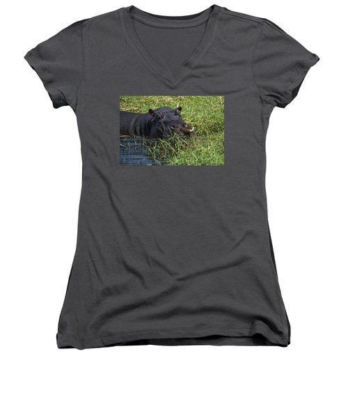 The Hippo And The Jacana Bird Women's V-Neck