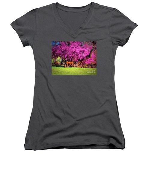 Grazing Horse  ... Women's V-Neck T-Shirt (Junior Cut) by Chuck Caramella