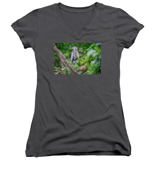 Great Blue Heron 2 Women's V-Neck T-Shirt
