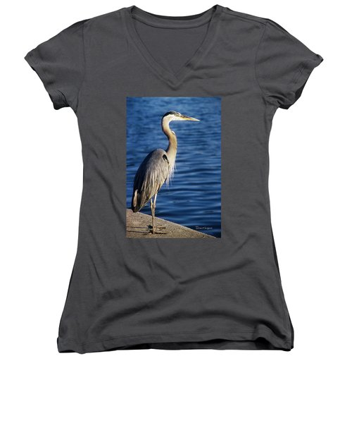 Great Blue Heron At Put-in-bay Women's V-Neck T-Shirt (Junior Cut) by Terri Harper