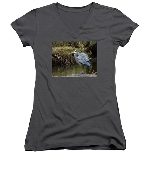 Great Blue Heron On The Watch Women's V-Neck T-Shirt
