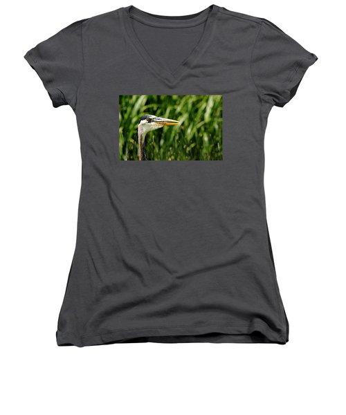 Great Blue Heron Portrait Women's V-Neck T-Shirt (Junior Cut) by Debbie Oppermann