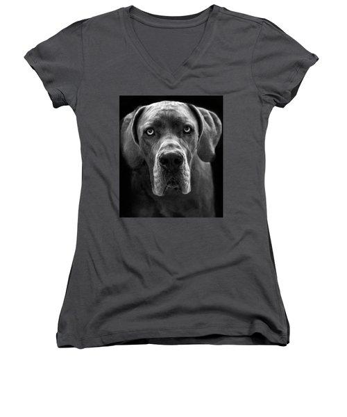 Great Dane  Women's V-Neck T-Shirt (Junior Cut) by Alex Galkin