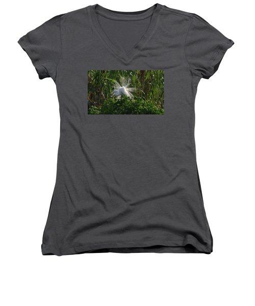 Great Egret Displays Windy Mating Plumage Women's V-Neck T-Shirt