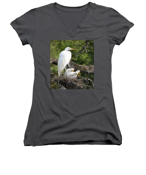 Great Egret Family  Women's V-Neck T-Shirt (Junior Cut) by Richard Bryce and Family