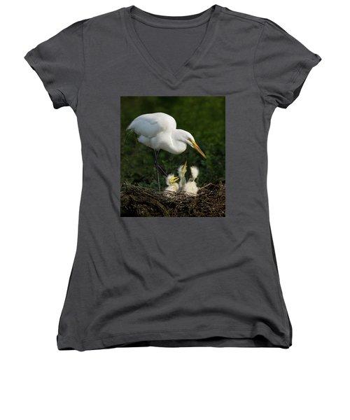 Great Egret With Chicks Women's V-Neck