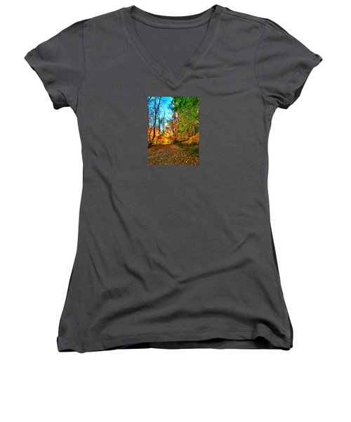 Great Finale Women's V-Neck T-Shirt (Junior Cut) by Zafer Gurel