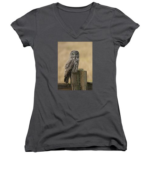 Women's V-Neck T-Shirt (Junior Cut) featuring the photograph Great Gray Owl by Doug Herr