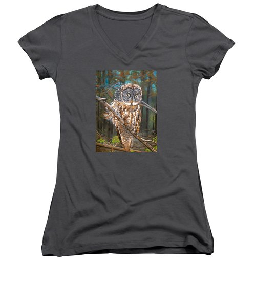 Great Grey Owl 2 Women's V-Neck T-Shirt (Junior Cut) by Sharon Duguay