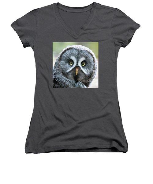 Great Grey Owl Closeup Women's V-Neck