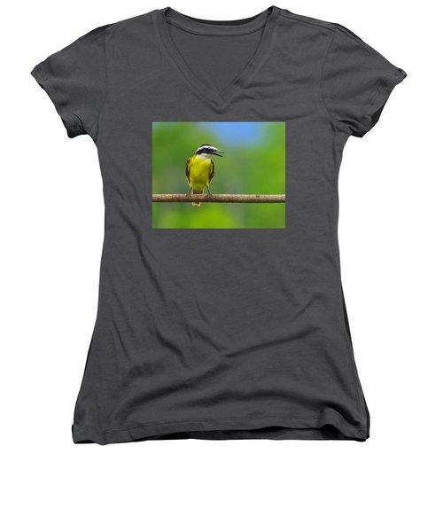 Great Kiskadee Women's V-Neck T-Shirt (Junior Cut) by Tony Beck