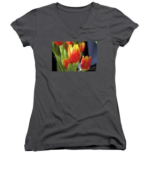 Great Light  Women's V-Neck T-Shirt
