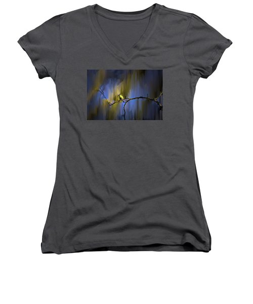 Great Tit On Branch #h3 Women's V-Neck