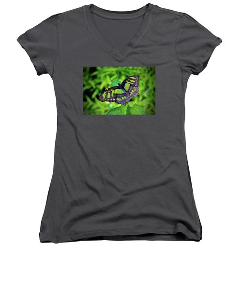 Green And Black Butterfly Women's V-Neck