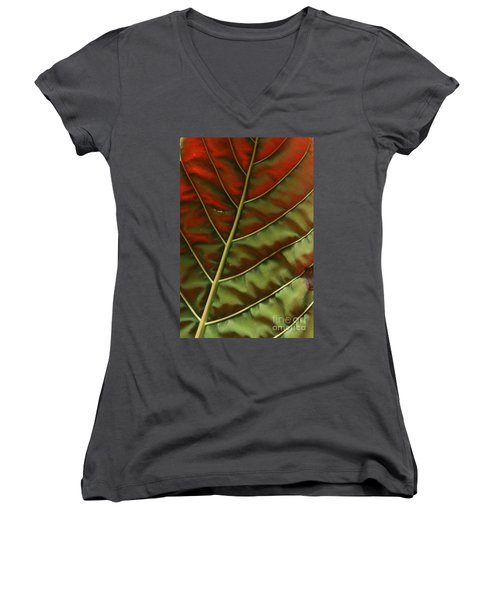 Green And Red Leaf Silky Dunes 2 Women's V-Neck T-Shirt