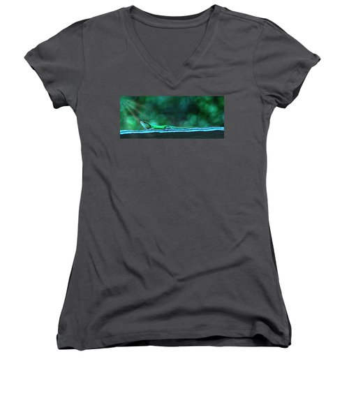 Green Anole Lizard Women's V-Neck